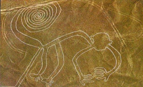 nazca-mono