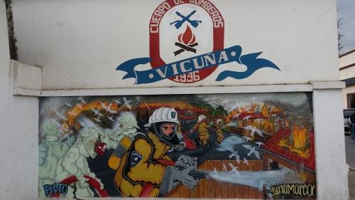 vicuna-valle-elqui