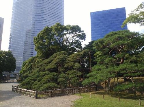 Hama-rikyu Onshi-teien